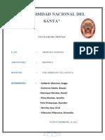 Informe de volumenes pulmonares (1).docx