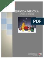 Informe Final de Quimica Agricola