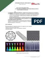 Anexa 8.4 Directie Strategica Nanomateriale