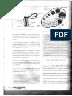 IMG_20141218_0002.pdf