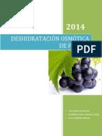 PRACTICA 2Deshifdratacion