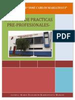 Informe de Practicas Sub Region