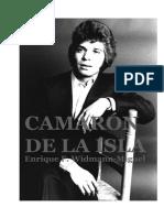 RECORDANDO A CAMARÓN DE LA ISLA-Enrique F. Widmann-Miguel (2013)