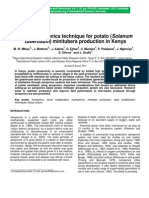 Use of Aeroponics Technique for Potato (Solanum Tuberosum) Minitubers Production in Kenya