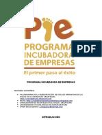 Programa Incubadoraa de Empresas (Pie)