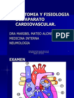 anatomiayfisiologiadelaparatocardiovascularlobitoferoz13-110115213434-phpapp02