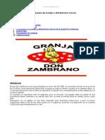 Presupuesto Manejo y Alimentacion Avicola