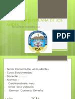Universidad Peruana de Los Andes Indice