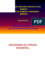 mecanismoscatalisis enzimatica 2013