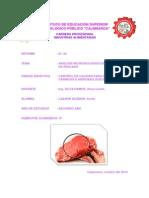 Practica Microorganismos