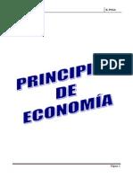 LibroMicroEconomia PUGA COMPLETO