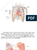 vaskularisasi jantung.pptx
