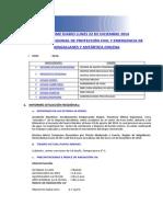 Informe Diario Onemi Magallanes 22.12.2014.Doc