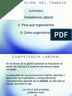 44-Organizacion Del Trabajo