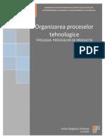 Tipologia Proceselor de productie