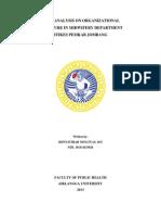 Brief Analysis on Organizational Structure in.pdf