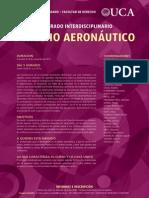 Flyer Curso Der Aeronautico