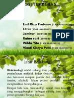 Bioteknologi Tumbuhan