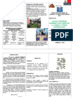 triptico ALFALFA (120).doc