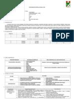 PCA - ED. FISICA - SECUNDARIA 2013 - RONY.doc