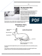 The Snowshoe Hare - worksheet
