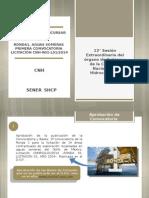 CNH-2.pdf