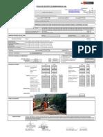 ejemplo de ficha emergencia vial -MTC-PERU