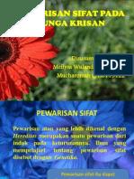 PPT_KRISAN (Revisi)