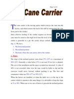 Cane Carrier