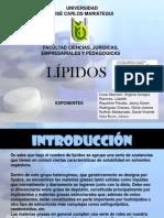 DIAPOSITIVA LIPIDOS GRUPO.ppt