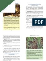 CONTINUTUL BROSURI - FAUNA DIN REZERVATIA BIOSFEREI DELTEI DUNARII.pdf