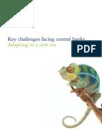 Risk Deloitte Key Challenges Facing Central Banks
