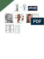 siap print praktikum.docx