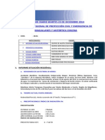 Informe Diario Onemi Magallanes 23.12.2014