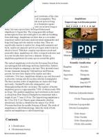 Amphibian.pdf