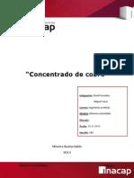 Concentrado de cobre.docx