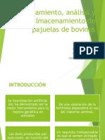 Procesamiento, análisis y almacenamiento de pajuelas de