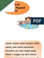 Flipchart Demam Thypoid