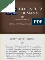 1. Citogenetica Humana