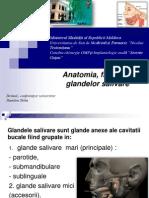 Prelegere 1 Anatomia, Fiziologia Metode de Investigare Ale Glandelor Salivare