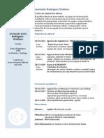 modelo de curriculum cronologico