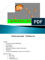 Mikro Mineral 1
