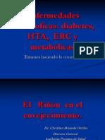 Enfermedades Catastroficas HTA, DM, ERC Nov 2014