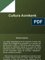 Cultura Aonikenk