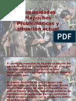 Comunidades Mapuches, problemáticas y situación actual