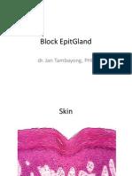 Block EpitGland1