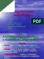 A Meggyozo Erveles Pszichologiaja1
