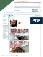 Santai Daging Kambing Panggang - CariGold Forum