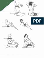 AÇÃO_ DOBRAS E EXPRESSÃO..pdf
