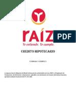 Gestion de Proyectos Financiera Raiz